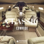 Townsend Leather Classic Cowhide (22)
