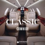 Townsend Leather Classic Cowhide (31)