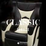 Townsend Leather Classic Cowhide (33)