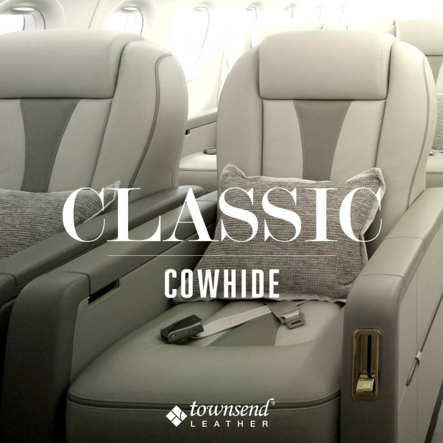 Townsend Leather Classic Cowhide (6)