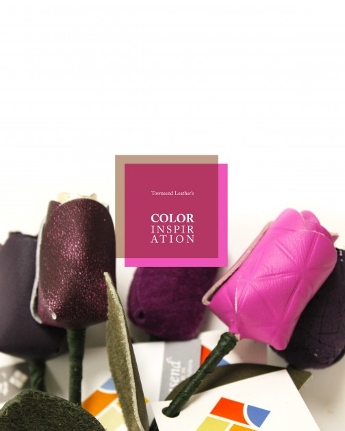 Color Inspiration5
