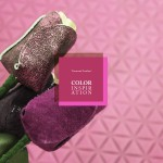 Color Inspiration7