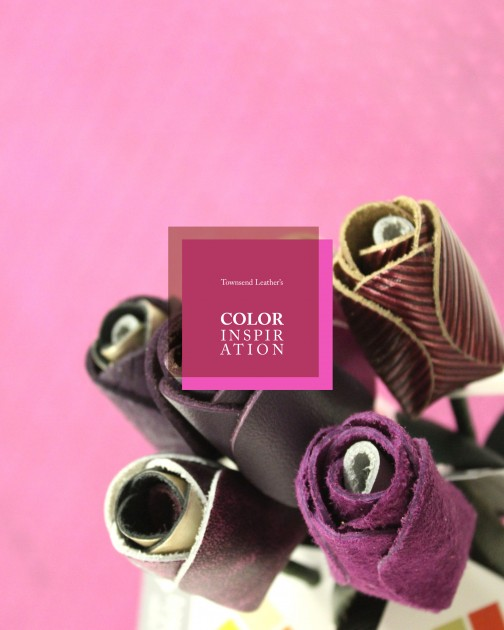 Color Inspiration9